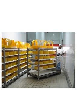 20-T Stainless steel pallet truck capacity from 2000 Kg